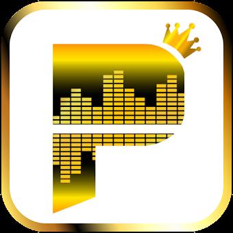 Premium Pandra Music Radio Playlist Guidelines