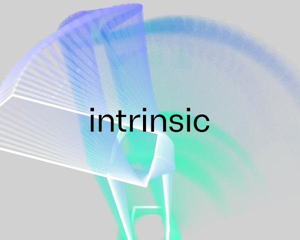 Introducing Intrinsic