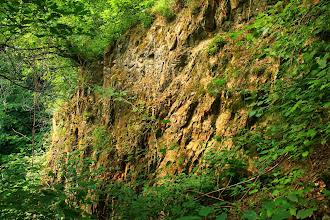 Photo: A Máza melletti egykori kicsiny kőfejtő az alsó-miocén korú Gyulakeszi Riolittufa Formáció összesült tufáját tárja fel