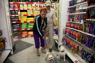 Photo: Oliver with adopters  goes shopping at Pet Food Express