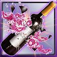 Shoot Bottles icon