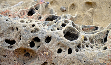 Photo: 97. Adding to the beauty of Point Lobos' scenery are many unusual rock formations crafted by water and winds.