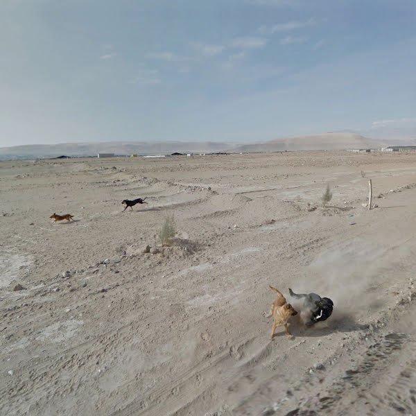 Tacna | Peru