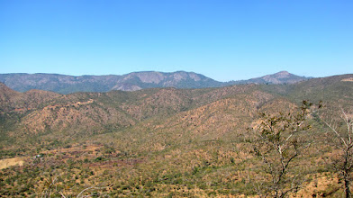 Photo: Bvumba Mountains