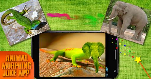 動物モーフ。ハイブリッドフェイス|玩模擬App免費|玩APPs