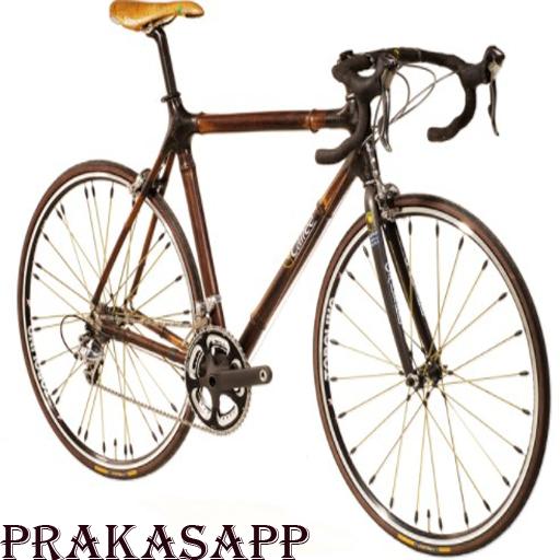 App Insights: Bamboo Bicycle Design | Apptopia