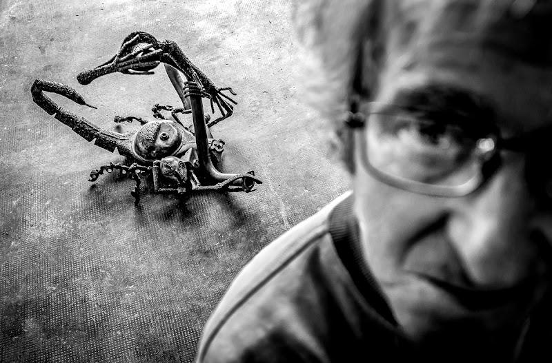 L'insidia dello scorpione di alberto raffaeli