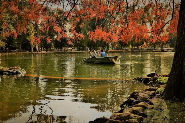 Romantic autumn di adimar