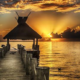 Sunrise at the Pier by Richard Michael Lingo - Buildings & Architecture Bridges & Suspended Structures ( gold, sunrise, pier, water, landscape,  )