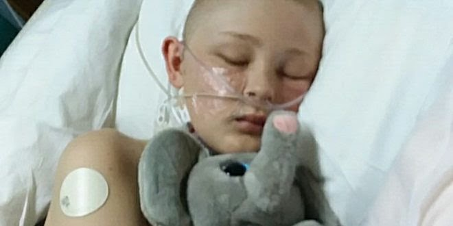 Hours from organ harvesting, comatose boy wakes up