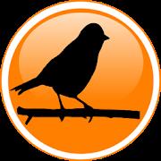 পাখি পালন -Pigeon, Koel, Duck