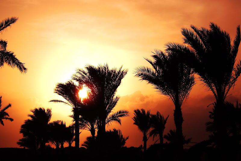 La magia di un tramonto di Eleonora Iseppi
