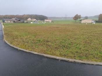 terrain à Fontevraud-l'Abbaye (49)