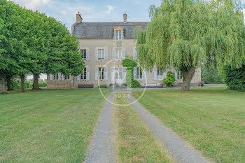 château à Langeron (58)