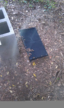 Photo: this is the frame I knocked over onto the ground and got them a little stirred up