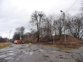 Photo: wycinka drzew, VII Dwór