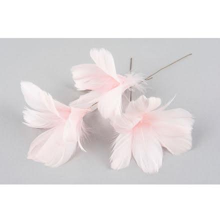 Fjädrar Blom Rosa 12-pack