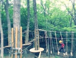 那須の森の空中アスレチック NOZARU(ノザル)