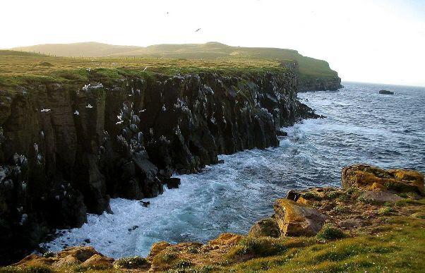 Ilha Grímsey-Norte