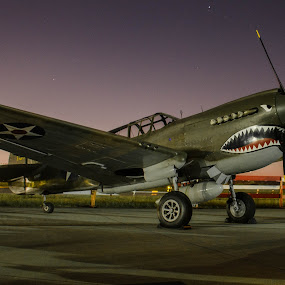 Tiger at Sunrise by Ron Malec - Transportation Airplanes ( curtis, warhawk, p-40, flying tigers )