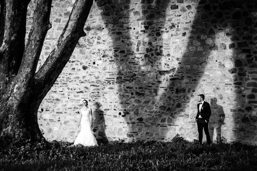 Wedding photographer Milan Lazic (wsphotography). Photo of 25.01.2016