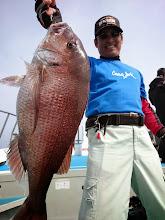 Photo: うひょー! 綺麗な真鯛!4.5kgでした!