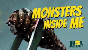My Face Eating Parasite thumbnail