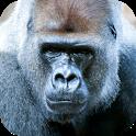 Gorilla Sounds icon