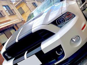 シェルビー  GT500のカスタム事例画像 blk_challengersrthellcatさんの2019年09月15日16:46の投稿