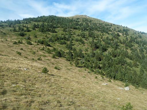 Puig de l'Estella