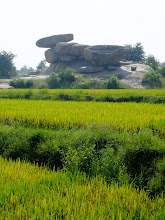 Photo: Rice paddies and boulders