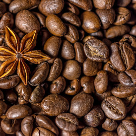 The Exception by Ovidiu Sova - Food & Drink Ingredients ( ingredients, coffee beans, still life, brown, star anise )