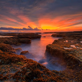 by Mac Evanz - Landscapes Sunsets & Sunrises