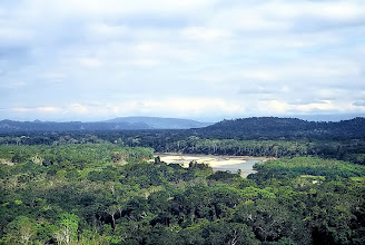 Photo: Park Narodowy Alto Madidi / Alto Madidi National Park