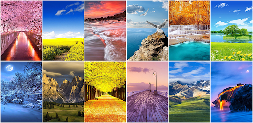 Nature Wallpaper for PC