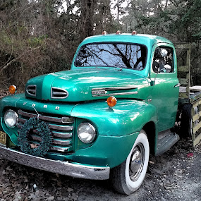 Ford by Teresa Daines - Transportation Automobiles ( truck, ford, angique,  )
