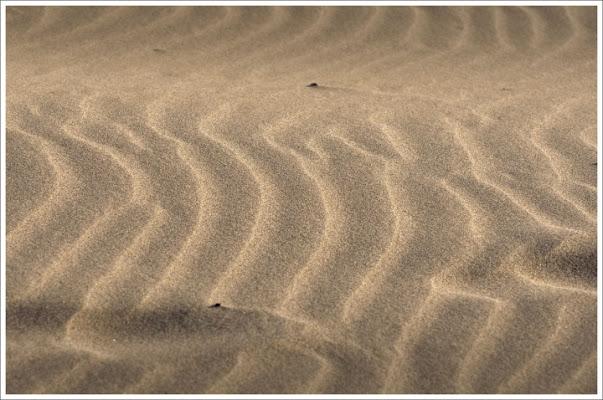 Semplicemente sabbia di dodoflai