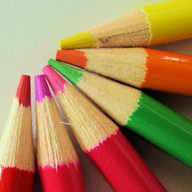 Drawn Together by Tammy Drombolis - Artistic Objects Still Life ( red, macro, pink, green, blue, pencils, pencil,  )