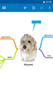 SimpleMind Pro – Intuitive Mind Mapping v1.21.1 [Patched] APK 1