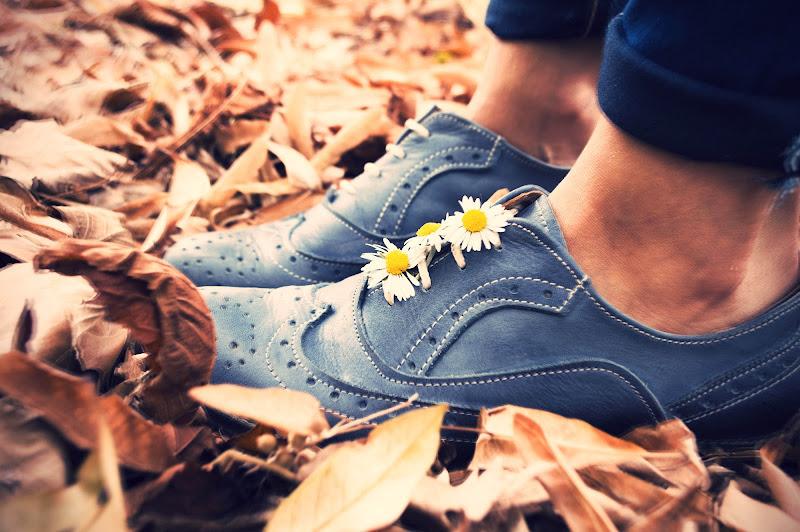 Autumn. di aitasimona