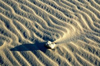 Photo: Sand ripples, Kelso Dunes, Mohave Desert National Preserve, California