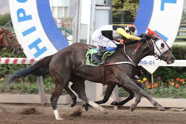 Marisela (Aragorn) gana Handicap (1000m-Arena-HCH).