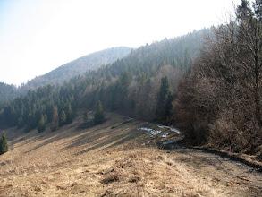 Photo: 11.Dalej niebieski szlak biegnie lasem, ale od czasu do czasu pojawiają się też widokowe polanki.