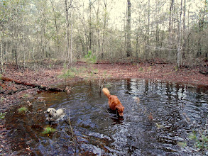 Photo: Keeper and Heather in a sinkhole
