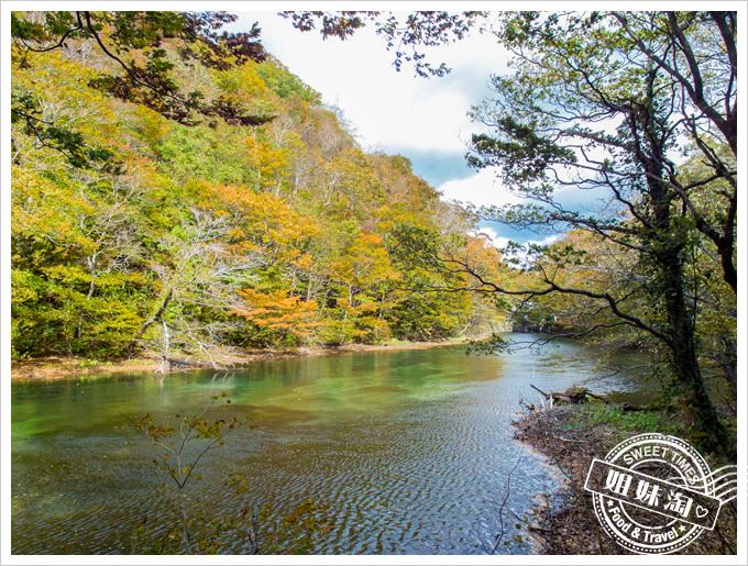 日本東北仙台五日遊奧入瀨溪