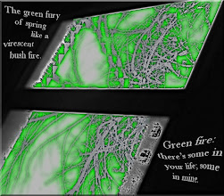 Photo: Green Fire: a photo poem.... a digitally manipulated image taken with my iPhone.   My son, at 4 years, describing a scribble drawing, said, 'It's green fire: there's some in your life; and some in mine.' He knew. (He's 24 now, but some things you never forget.)