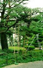 Photo: Kenruko-en, Kanazawa, 1999.