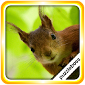 Jigsaw Puzzles: Squirrels icon