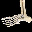 VR Human Leg icon