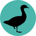 Progressive Goose Decoy icon